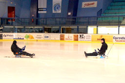 Ice sledge hockey (picture)